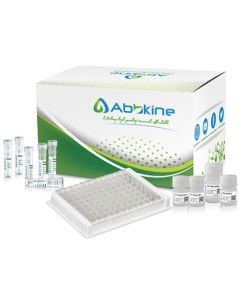 Canine Angiotensin-converting enzyme 2 (ACE2) ELISA Kit