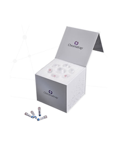 Chromatrap Enzymatic ChIP qPCR Protein A Kit