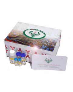 Chicken Nuclear factor erythroid 2-related factor 1 ELISA Kit
