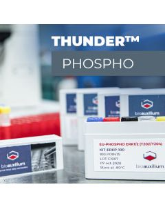 Phospho-4EBP1 (T37/T46) TR-FRET Cellular Assay Kit
